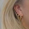 creol øreringe i guld